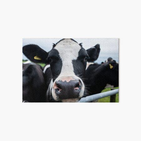 Dairy Cow /& calf fresian Wooden Wall Clock Farming Gift