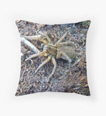 Wolf Spider - Female - Lycosidae Family Throw Pillow