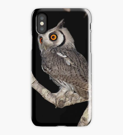 Southern White Faced Owl iPhone Case