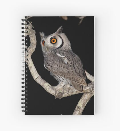 Southern White Faced Owl Spiral Notebook