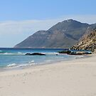 south africa by Lionelbush