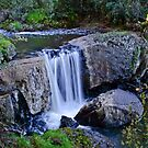 One of Tasmania's many waterfalls by Karen Stackpole