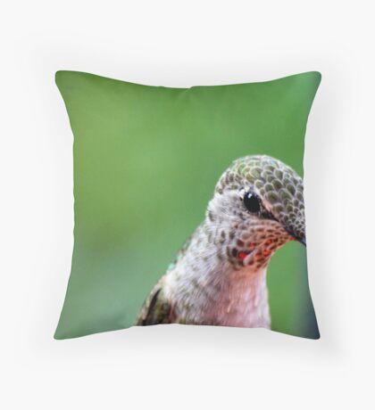 Beautiful head of immature Broadbill Humming Throw Pillow
