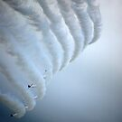 Red Arrows by Fiona Gardner
