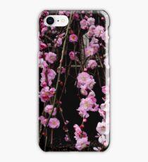 Cherry Blossom i Phone Case iPhone Case/Skin