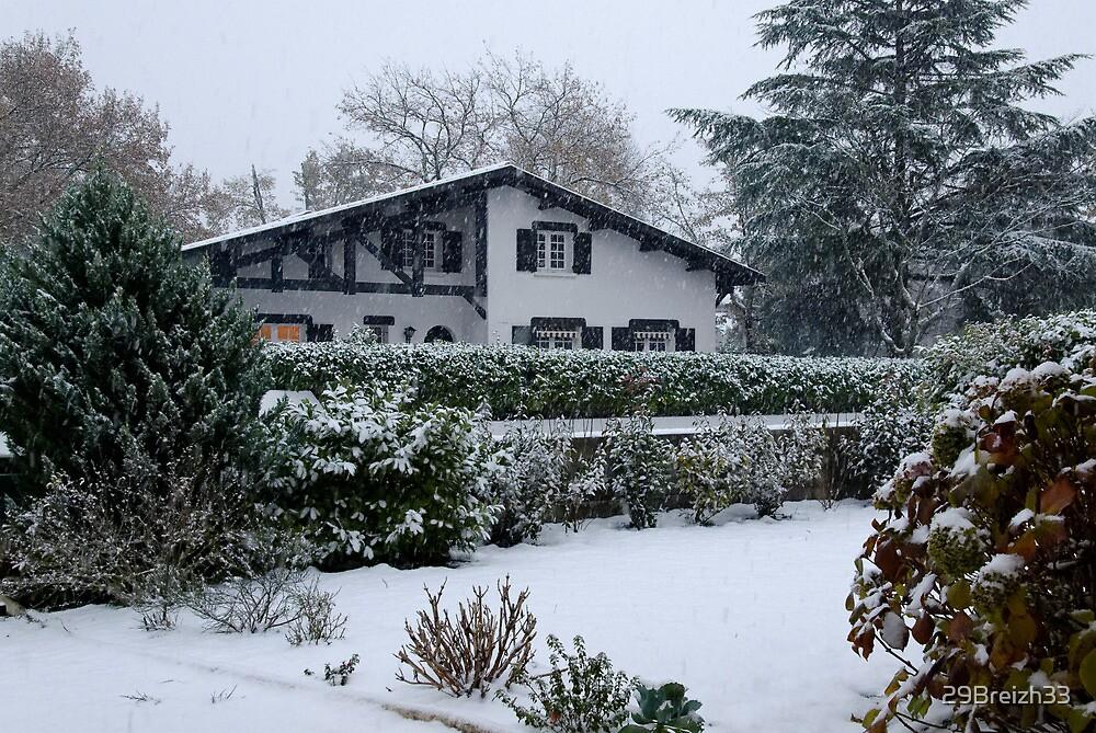 Rare snowfall in my home town by 29Breizh33