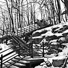 Snowy Steps by Miku Jules Boris Smeets