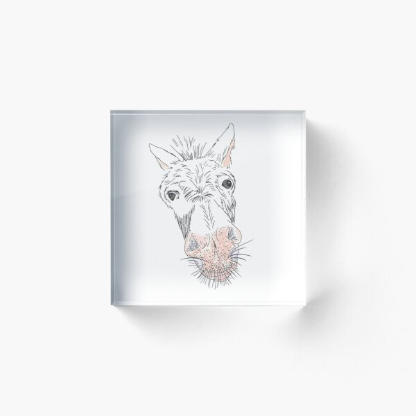Whiskered Mule Acrylic Block