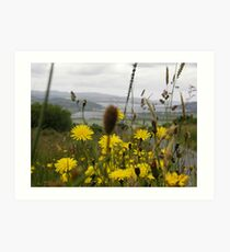 Flora - Burt Co. Donegal Ireland Art Print