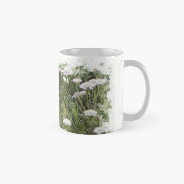 White Pincushion Wildflowers Digital Watercolor Coachella Valley Preserve Classic Mug