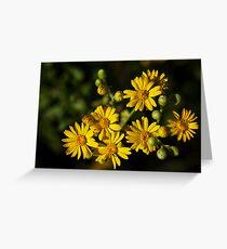 Beach Wildflowers Greeting Card