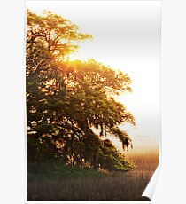 Sunrise in the Marsh Poster