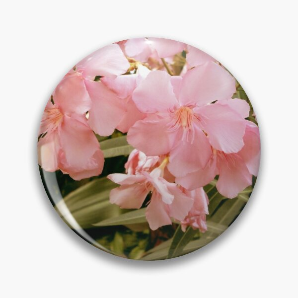 Pink Flowers Pin