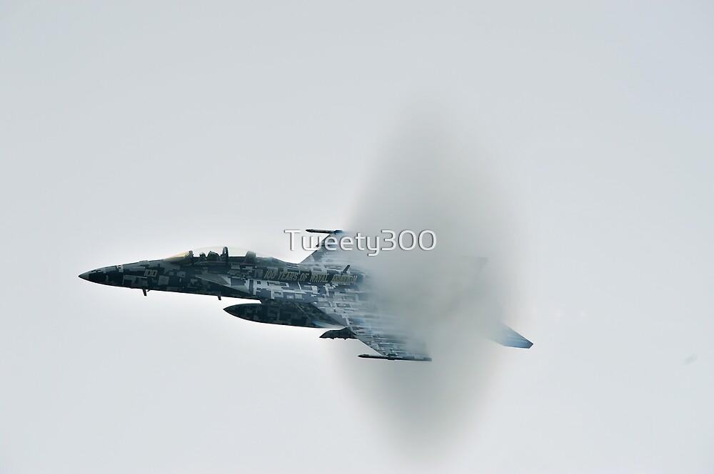 McDonnel Douglas F/A-18 Hornet by Tweety300