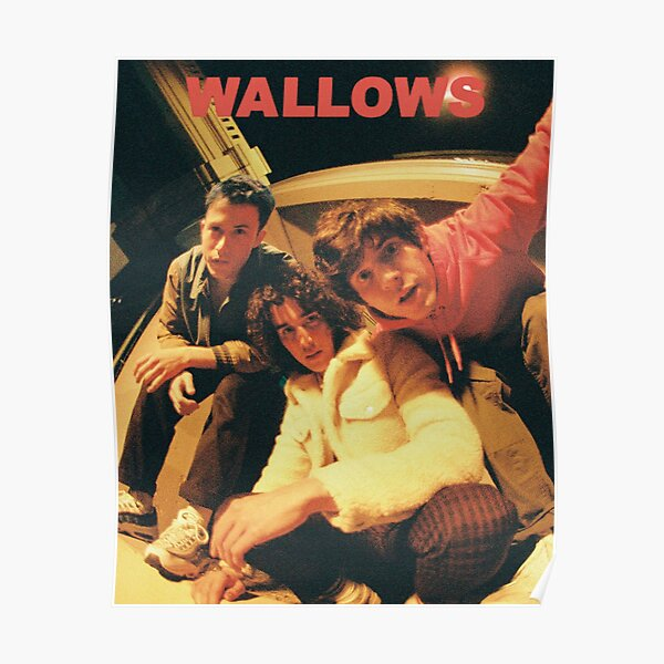 wallows ok Poster