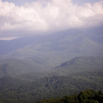 Mountain Carpet Version 1 de AmberRoques