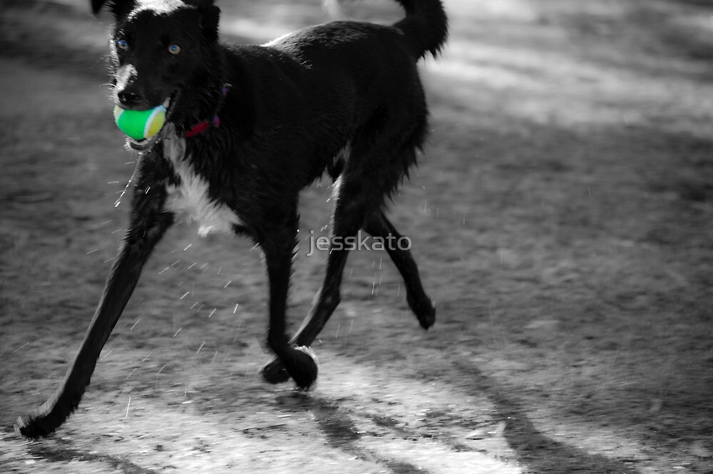 PLAY BALL by jesskato
