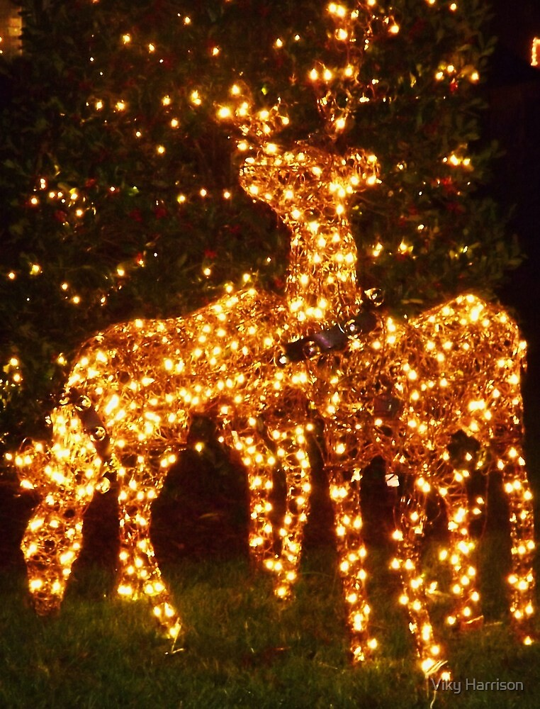 Lit Up Reindeer by Viky Harrison