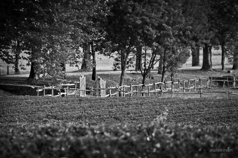 Margaux Country Road by awiseman