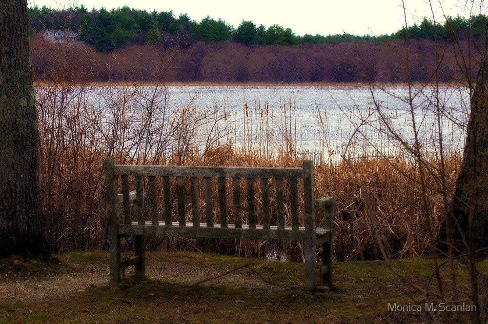 In Quiet Solitude by Monica M. Scanlan