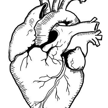 Heart by shbb