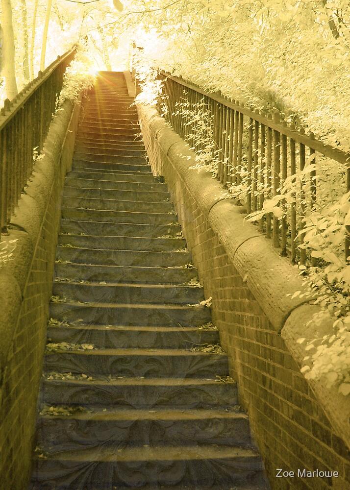 Sunlit Steps by Zoe Marlowe