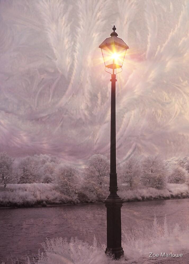Solitary Lamp 2 by Zoe Marlowe