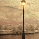 Solitary Lamp 3 by Zoe Marlowe