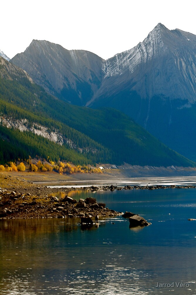 Jasper Wilderness by Jarrod Vero