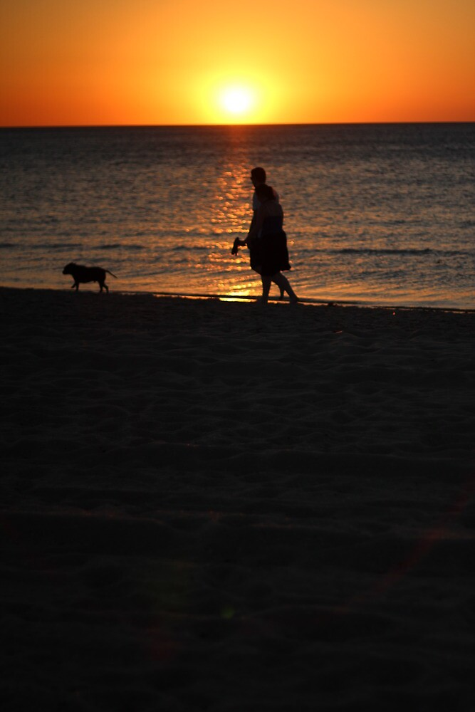 Evening Walk by JoelCollins