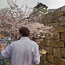 Osaka Jo • Osaka • Japan by William Bullimore
