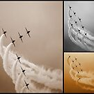 Red Arrows Collage by Fiona Gardner