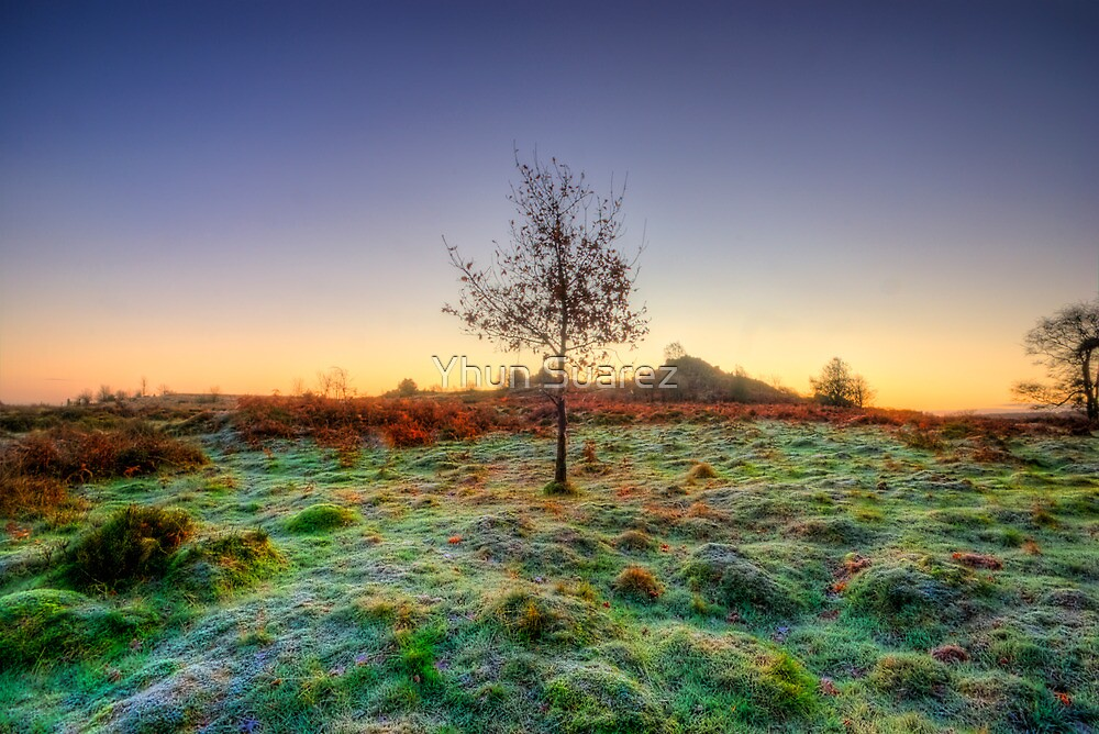 Colours Of Dawn by Yhun Suarez