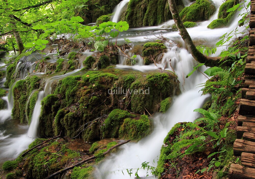Waterfalls by Willy Vendeville