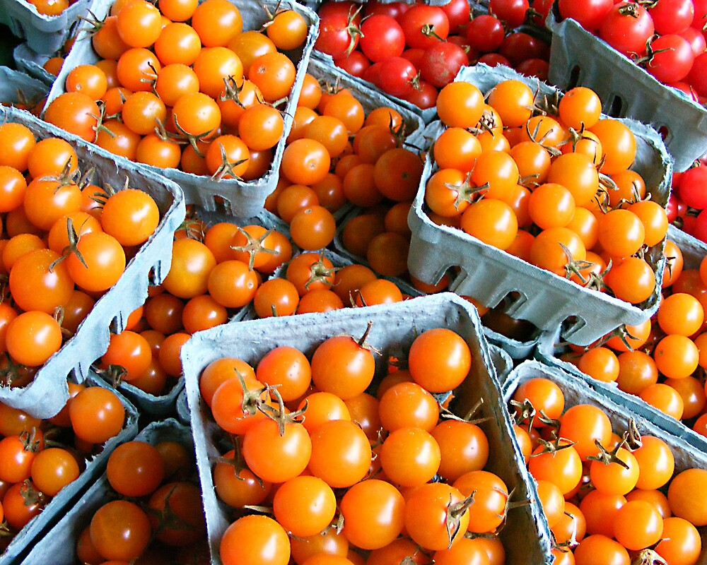 Cherry Tomatoes by Susan Glaser