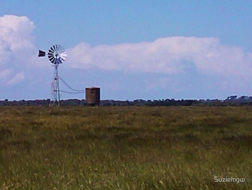 Windmill at Tyabb by Suziemgw