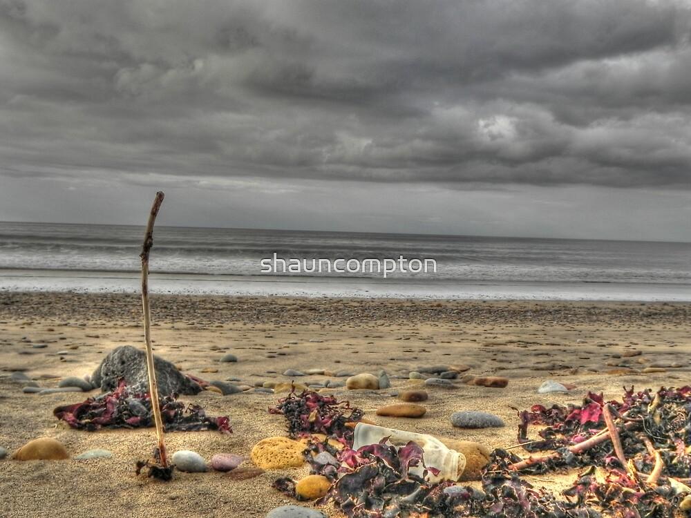 Beach HDR by shauncompton