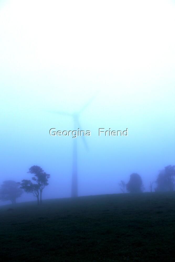 Windy Hill  by Georgina   Friend