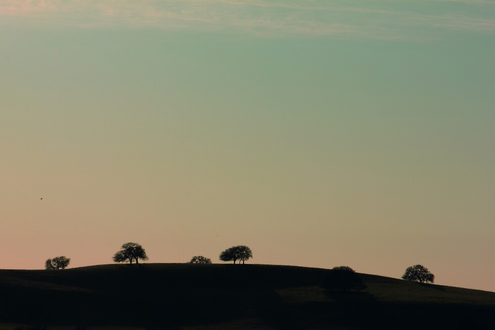 Dotted Hillside by JessicaDianne