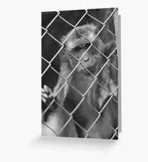 Caged Body & Mind Greeting Card