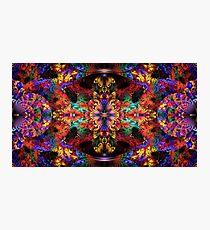 Rainbow Split Crop Photographic Print