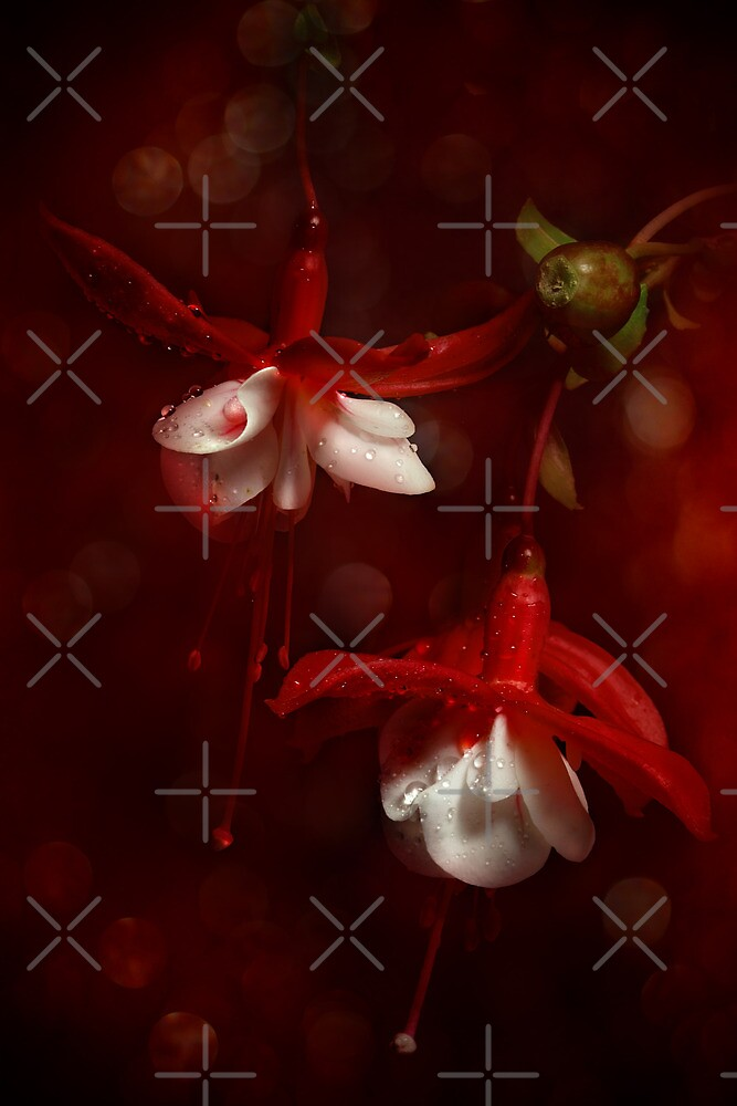 Red Light by EbyArts