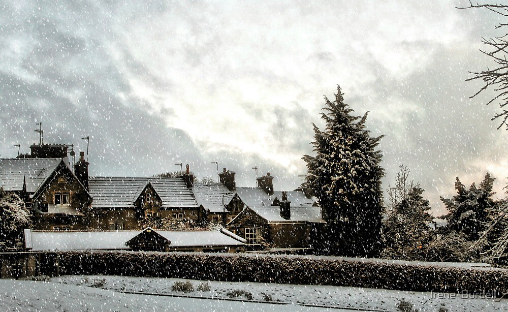 More Snow . by Irene  Burdell