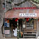 Lukenbach Texas - Waylan, Willie & The Boys by © Loree McComb