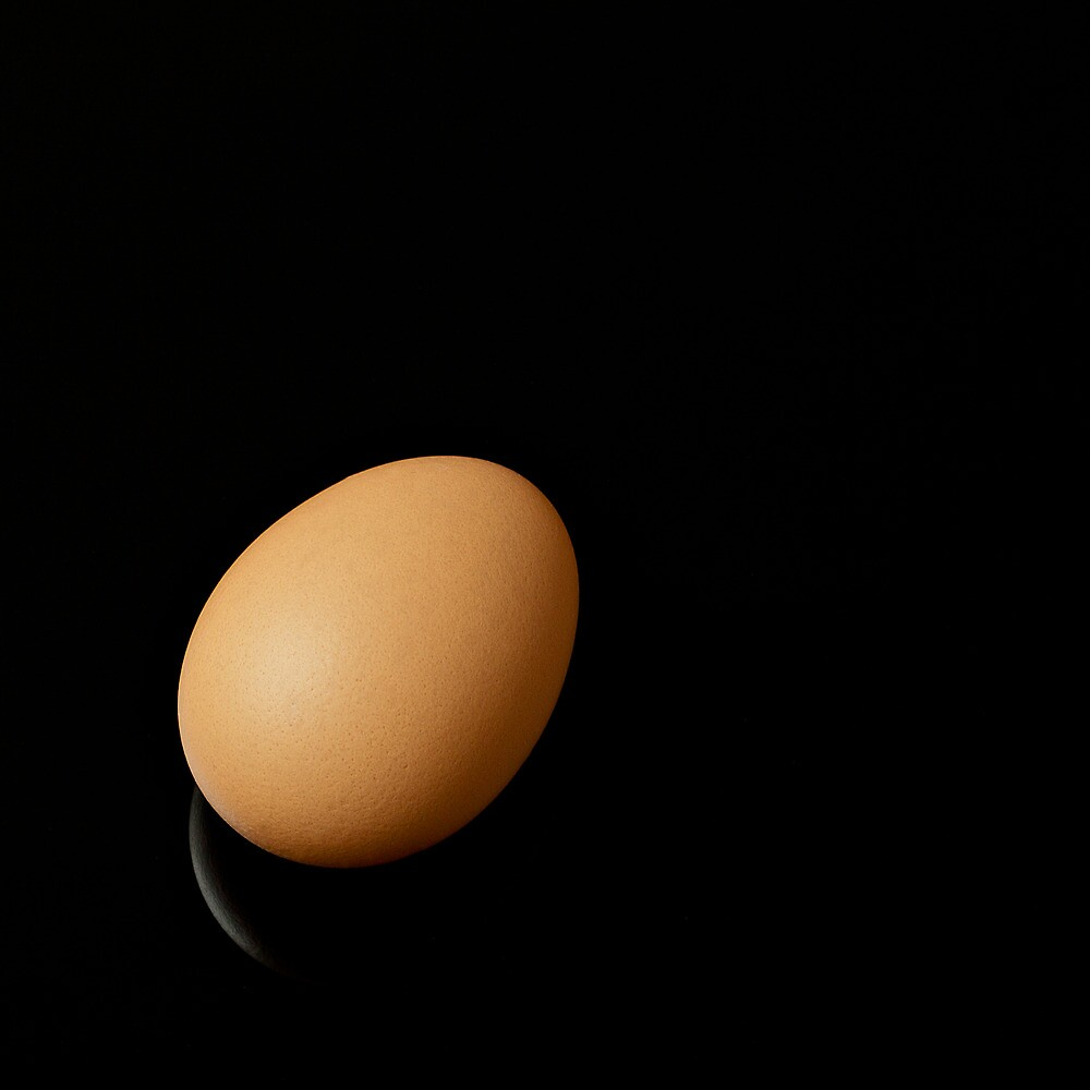 Egg by Gert Lavsen
