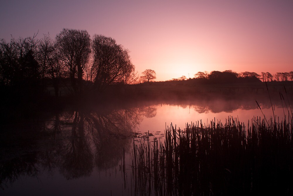 Misty Sunrise by marktc
