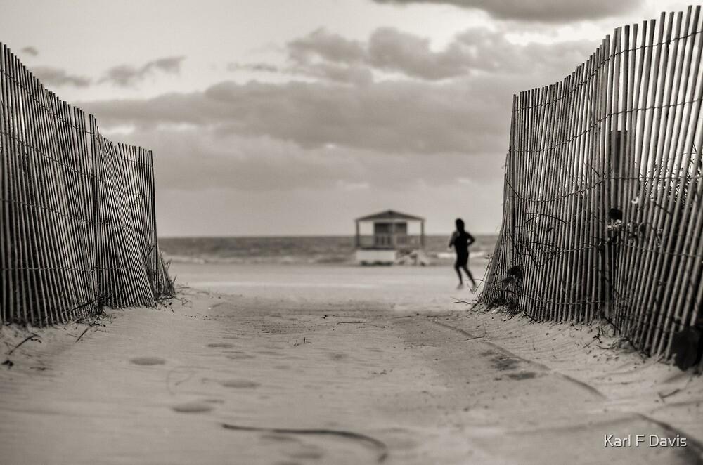 Miami Beach by Karl F Davis
