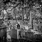 Beautiful Resting Place by BlackRussian