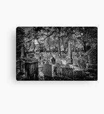 Beautiful Resting Place Canvas Print