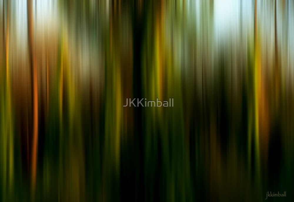 Everglades Sunset Dream by JKKimball